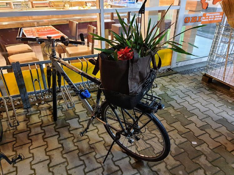 My bike loaded down with plants in the basket